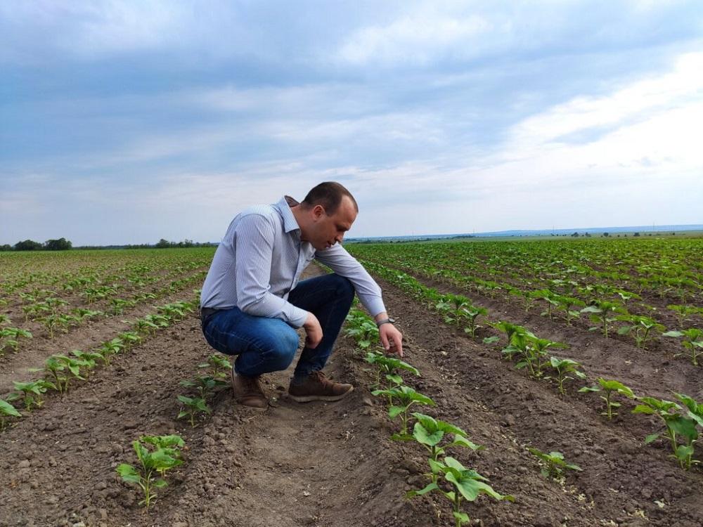 Határszemle - Fejér megyében 56 mm csapadék hiányzik